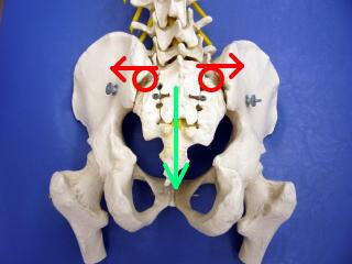産後の骨盤の開き2