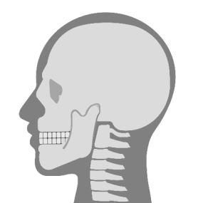 明石 朝霧整体院 頸椎の矯正